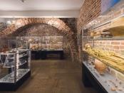 nowa wystawa archeologiczna, fot. D. Kołakowski (2)'