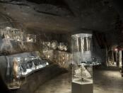 rózne rodzaje soli, fot. A. Grzybowski